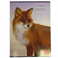 PIGNA prémium kockás füzet - A4 - rókás
