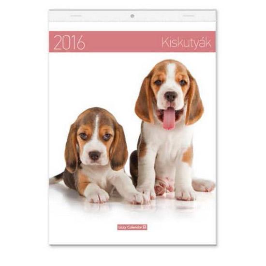 beagle naptár Kiskutyák falinaptár   B4 tűzött naptár   2016   LIZ15410701   beagle naptár